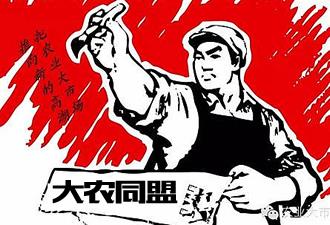 成功签约中国大农同盟商家入驻商城网站建设