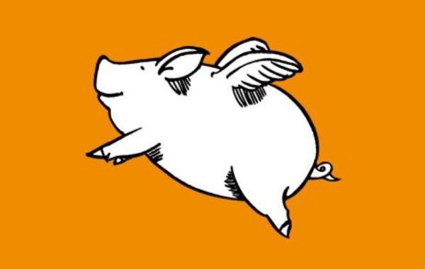 布局今日头条小程序这个风口,猪又要起飞了
